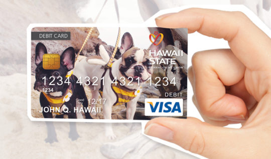 Custom debit card of two french bulldogs.