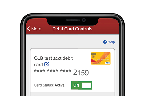 Screenshot of the Debit Card Controls in the Mobile App on a smartphone.