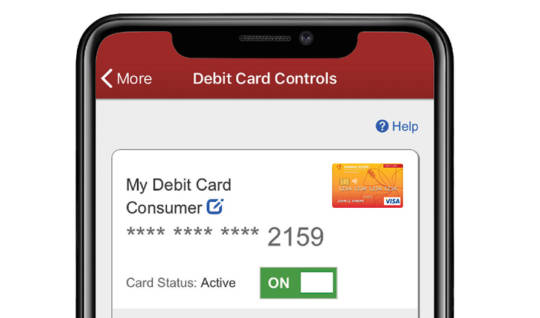 Mobile device with the Debit Card Controls on the screen